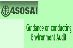 Guidence and conducting Environment Audit