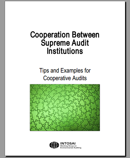 Cooperation Between Supreme Audit Institutions